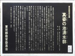 Kokubunji_yusui09
