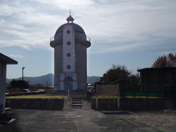 Kodama31
