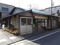 Kodama06