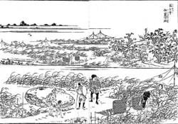 Kokubunji66