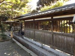 Meguromaeda03