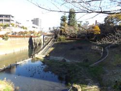 Ohji20_35