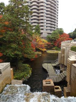 Shinagawa_goten2