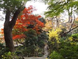 Shinagawa_goten7