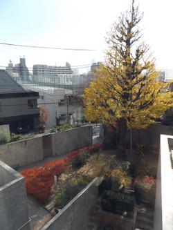 Sendagi_mori9