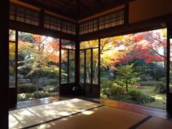 Sendagi_yasuda07
