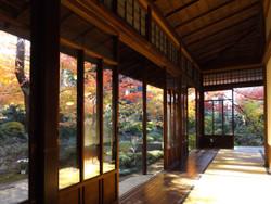 Sendagi_yasuda08