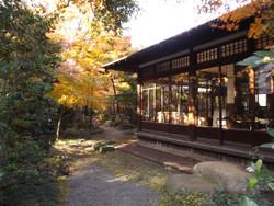 Sendagi_yasuda20