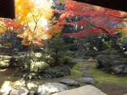 Sendagi_yasuda22