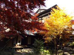 Sendagi_yasuda24