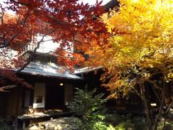 Sendagi_yasuda25