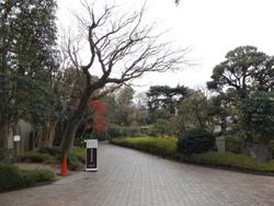 Kodansya_nojima3