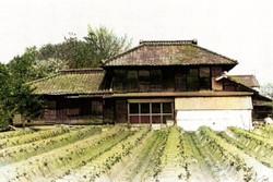 Nakajima_51c