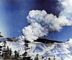 Shirane1982c