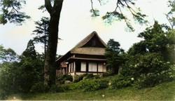 Shibusawa12c