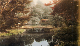 Takinogawa83