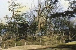 Suribachiyamakofunc