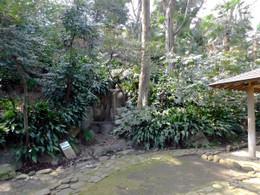 Nanushi68