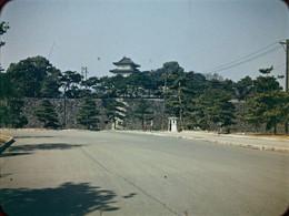 Fujimiyagura33