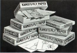 Kamoi38
