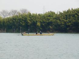 Yagiri_shibamata1