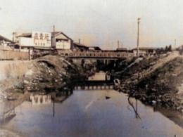 Toshimadog1955c