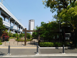 Kamata_ume5