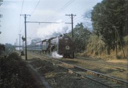 Hatsukari1960