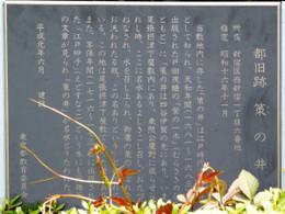 Shinjyuku_muchi9
