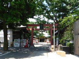 Yotsuya_suga1