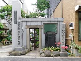 Tsuchimonotana3