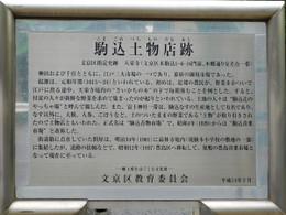 Tsuchimonotana9