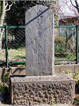 Tokorozawa_imo