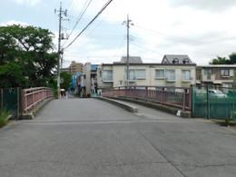 Kitsume_shimo1
