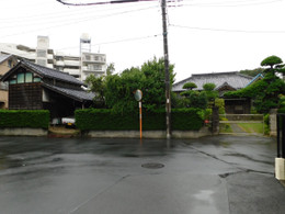 Kawaguchi_mori4