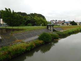 Kawaguchi_yahagi4