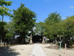 Urawa_kagenuma2