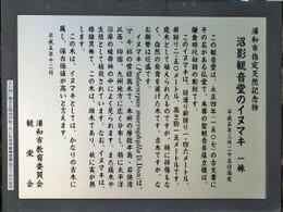 Urawa_kagenuma8