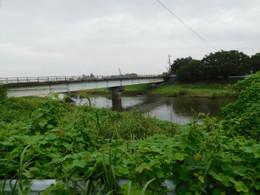 Shibayama6