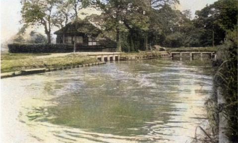 Kawarabuki3_bunsui1955c