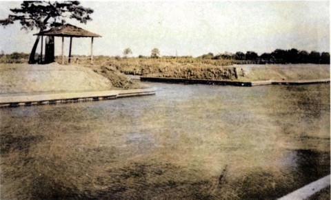 Kuronuma_1955c