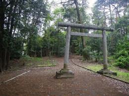Sakyu_hamakawado1