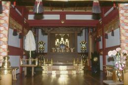 Kawaguchi_maekawa1