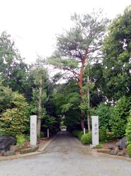 Kawaguchi_kongoji1