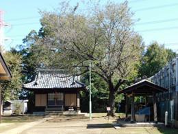 Tozuka_hikawa2