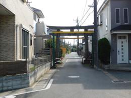 Hikawanyotai_torii3