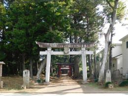 Urawa_kinokasa1