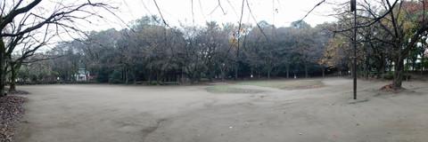 Hamakawato1