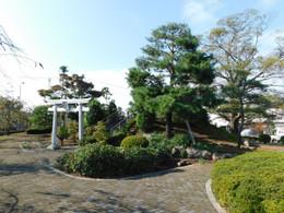 Biwatamei05
