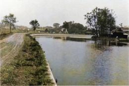 Kasaisakasagawa_1965c